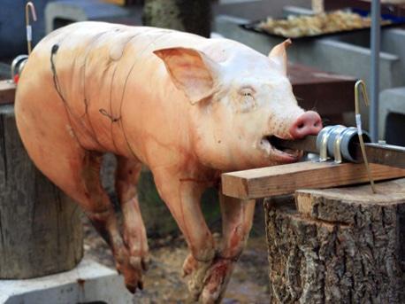 丸焼きにされる豚の様子。前回のイベント(2012年4月)で撮影(写真提供=福永雅文さん)