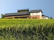 JTB姫路支店など、酒蔵巡る旅行商品開発へ-播磨の酒クローズアップ