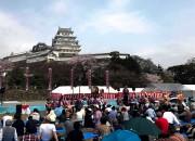 姫路城で「観桜会」 5万3000人が桜の宴を楽しむ