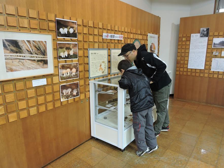 「粘菌」特別展を楽しむ親子