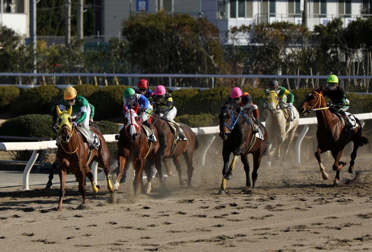 姫路競馬場が8年ぶりにレース再開