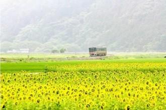 姫新線沿線の風景をテーマにフォトコンテスト インスタグラムを活用
