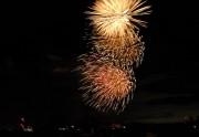 枚方の淀川河川公園でサプライズの打ち上げ花火 「くらわんか花火大会」復活目指す