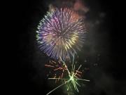 淀川河川公園で今年もサプライズ花火 「くらわんか花火大会」復活目指し1,000発