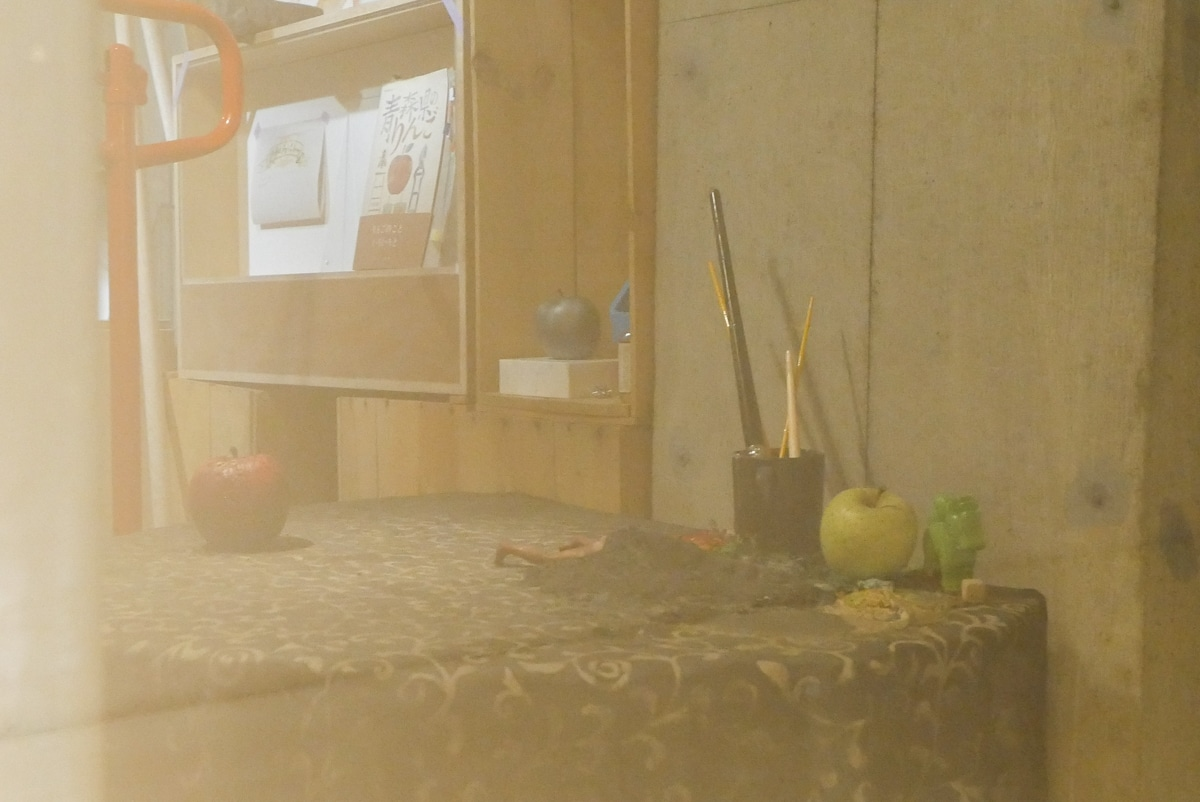 雨宮庸介「林檎と普遍性について」
