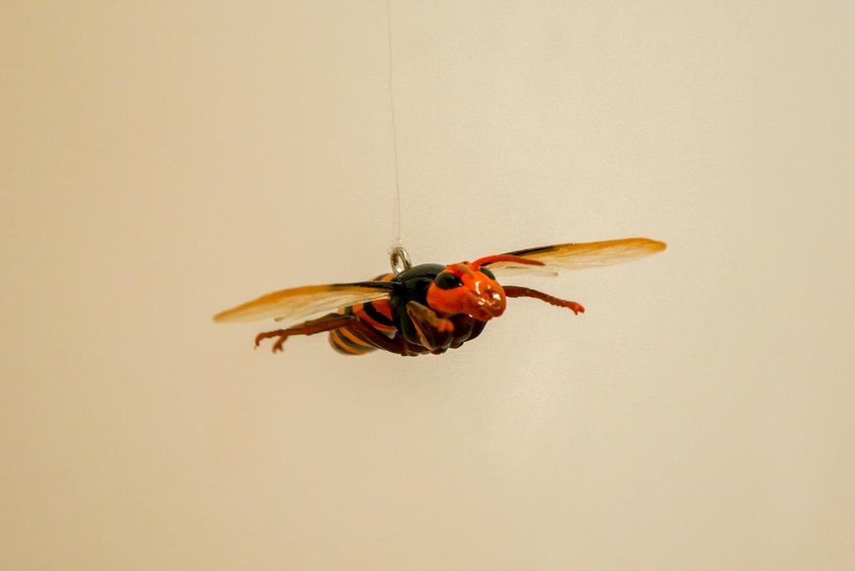 カラスも嫌がるというリアルな蜂の模型