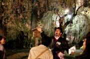 弘前さくらまつりで探偵たちが夜桜ガイド-「夜桜探偵団」に全国から申し込み