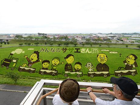 サザエさんの田んぼアート。あまりの大きさに写真撮影に困る見物客も(8月1日に撮影)(C)長谷川町子美術館