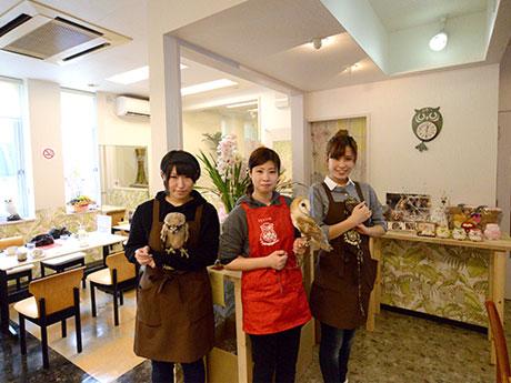 「ふくろうの城」店内。カフェスペースとフクロウの飼育スペースは分離しているため、衛生管理は徹底している