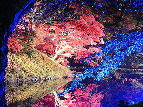「魔界」と評された弘前公園の紅葉のライトアップ(1)