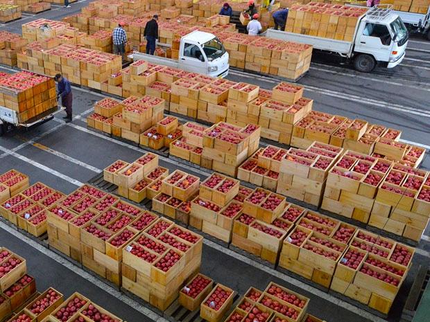 リンゴの木箱が並ぶ弘果弘前中央青果第3卸売場