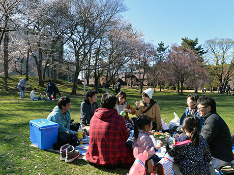 市民広場で花見を楽しむ弘前市民たち