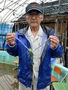 弘前の「オニテナガエビ釣り堀」が例年以上のにぎわい 養殖一筋30年