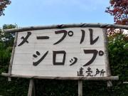 弘前のメープルシロップ専門店ネットで話題に 「なぜ」、首かしげる店主