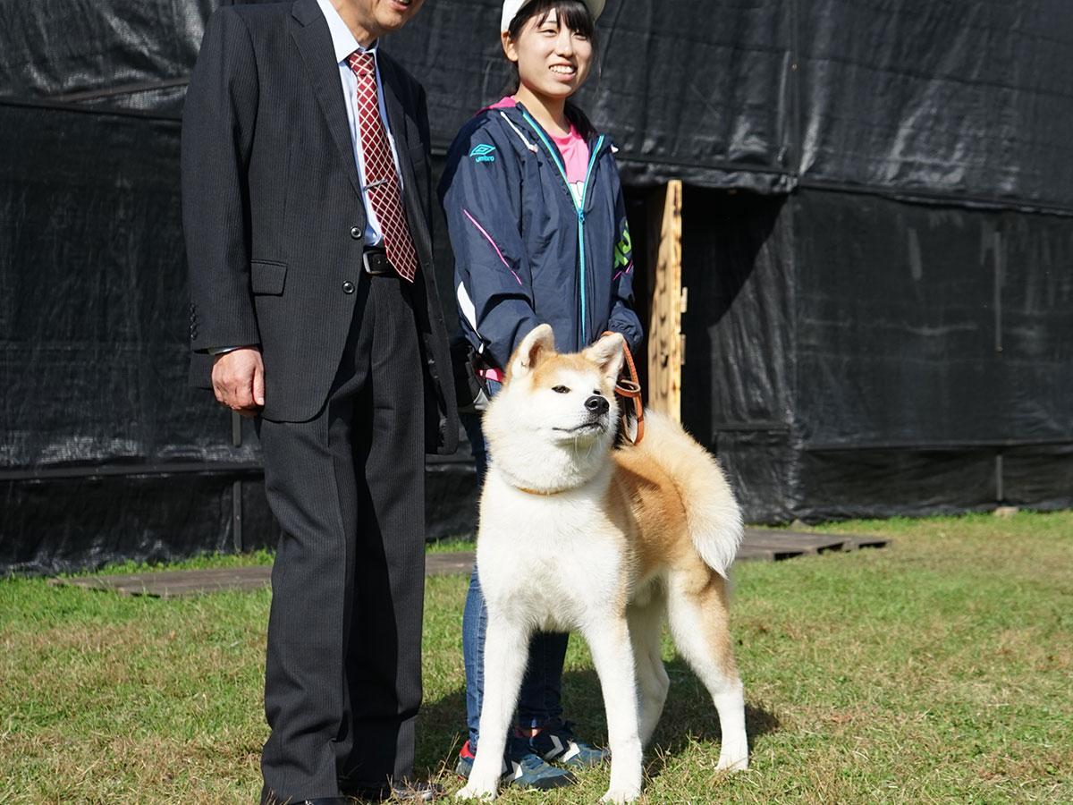 出張デビューをした秋田犬「勝大」。写真撮影などに応じる