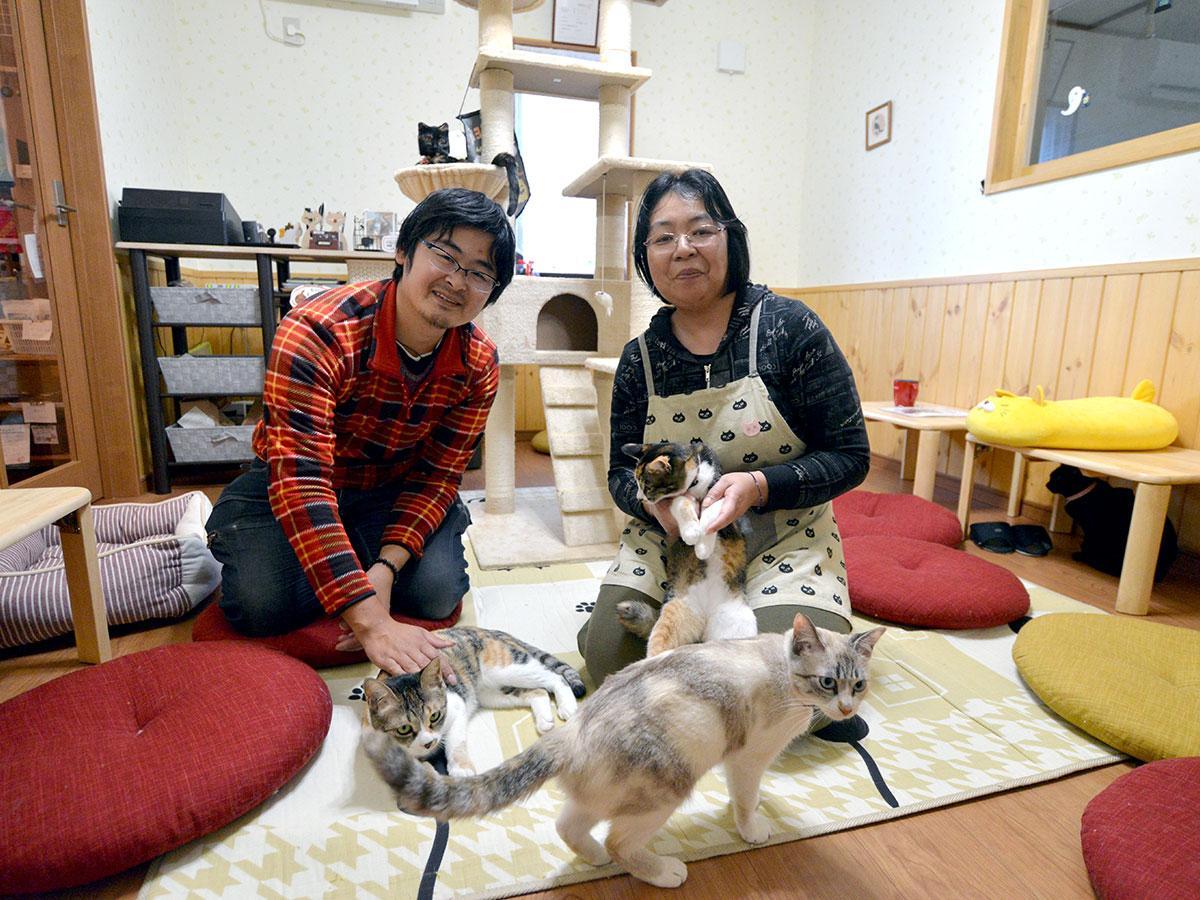 佐々木あつ子さんと直樹さん、在籍する猫たち
