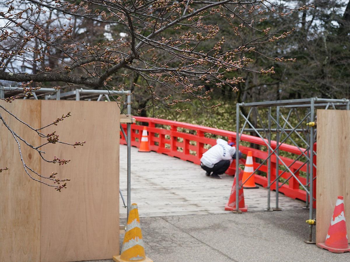 弘前公園内の杉の大橋にもバリケードを設置