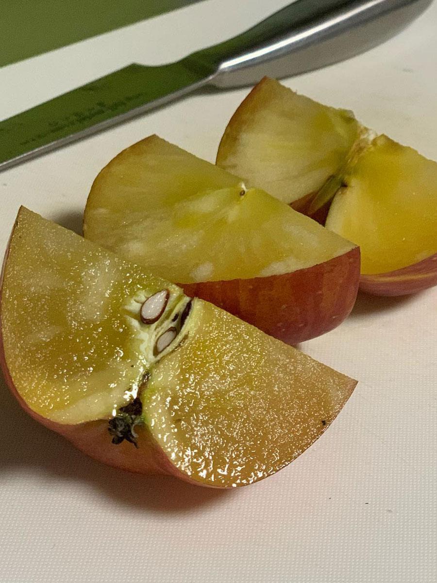 銀葉病の木からできた100%蜜入りリンゴという