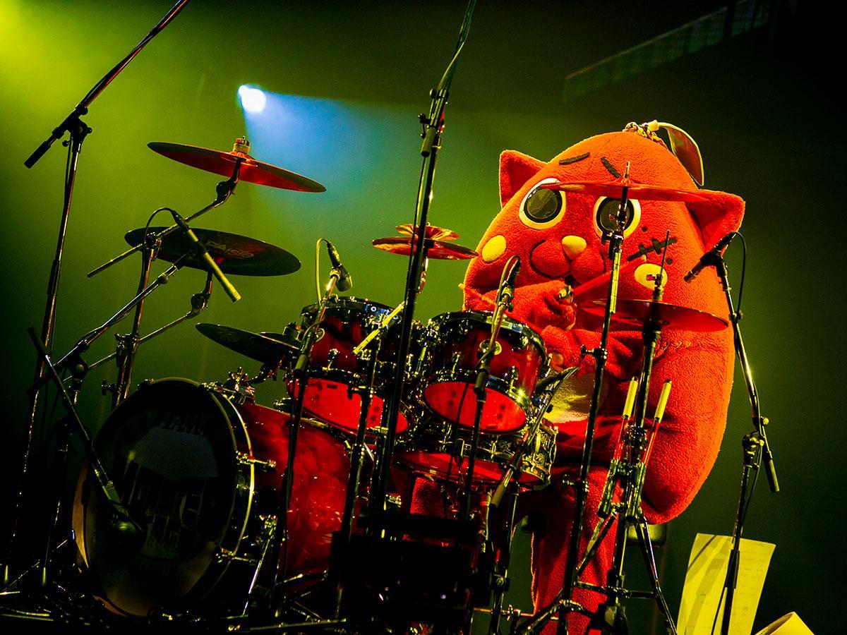 1月24日に東京・中野サンプラザで行われたライブ時のにゃんごすたー(撮影=sumi☆photo)