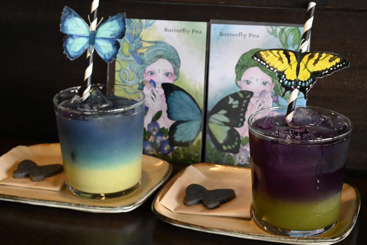 限定メニュー「青色森色ティー」(左から抹茶豆乳とキウイ)。サイトウパピコさんのポストカードが付く