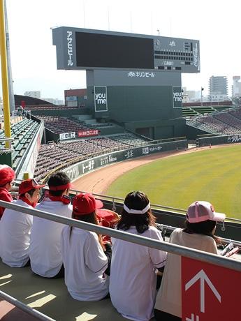 今年度、マツダZoom-Zoomスタジアム広島に登場する畳に座って観戦する「鯉(コイ)桟敷」