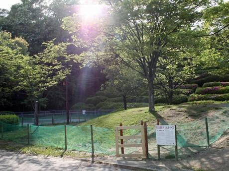 竜王公園内にオープンしたドッグラン