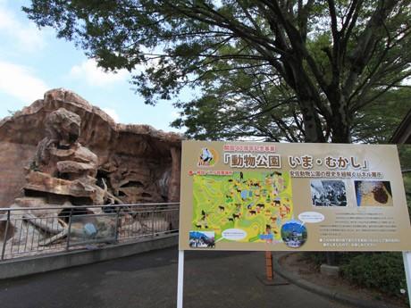 9月3日・4日には納涼ナイトサファリも開催する同園。現在は、150種1500点の動物が生息する。