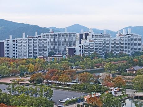 住宅以外にも人工地盤や商店街、集会所、学校、消防署を含む基町高層アパート
