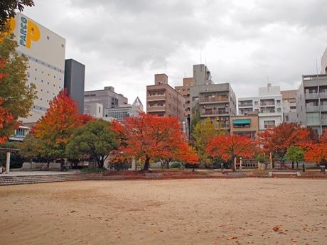 会場となる広島・袋町公園