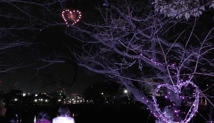 昨年、バレンタインに行った打ち上げ花火