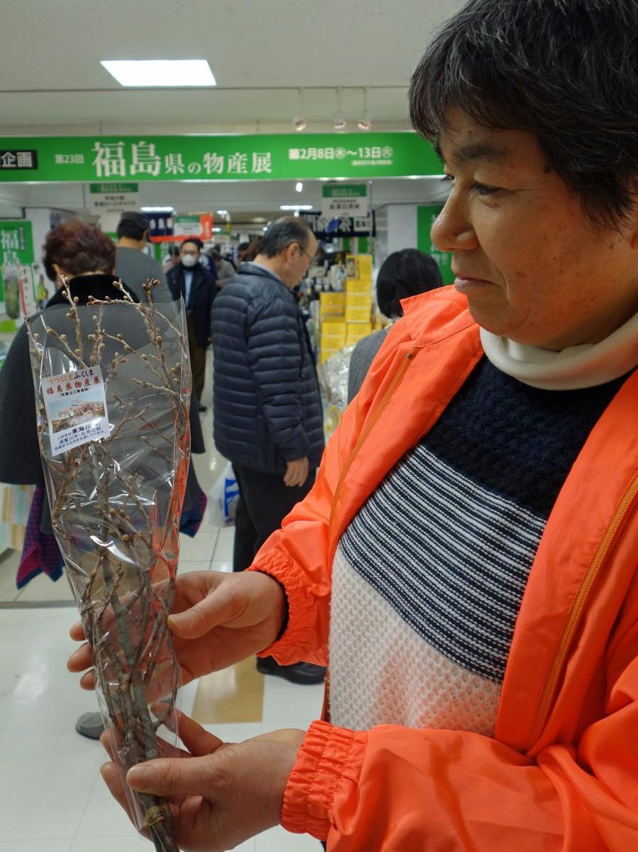 福島県の物産展会場で来場者に配った「東海桜」の枝
