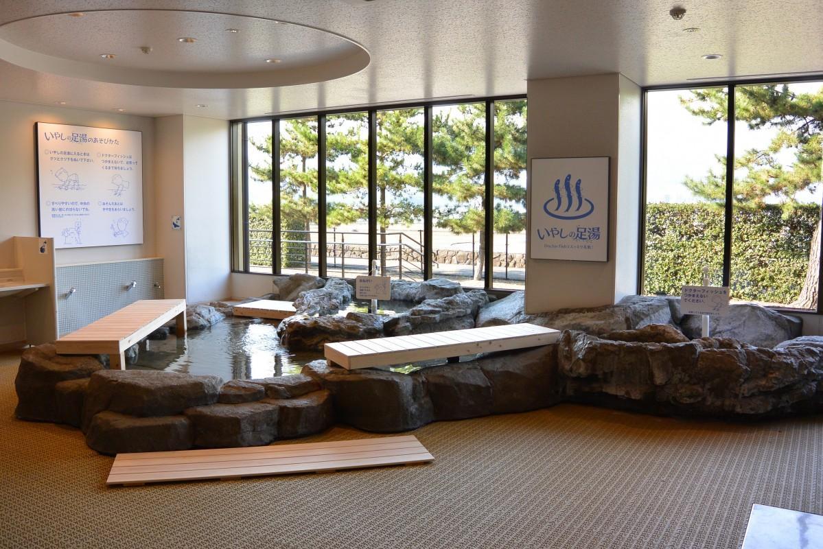宮島水族館1階の体験型展示スペース「ふれあいの磯」を使って期間限定で開く
