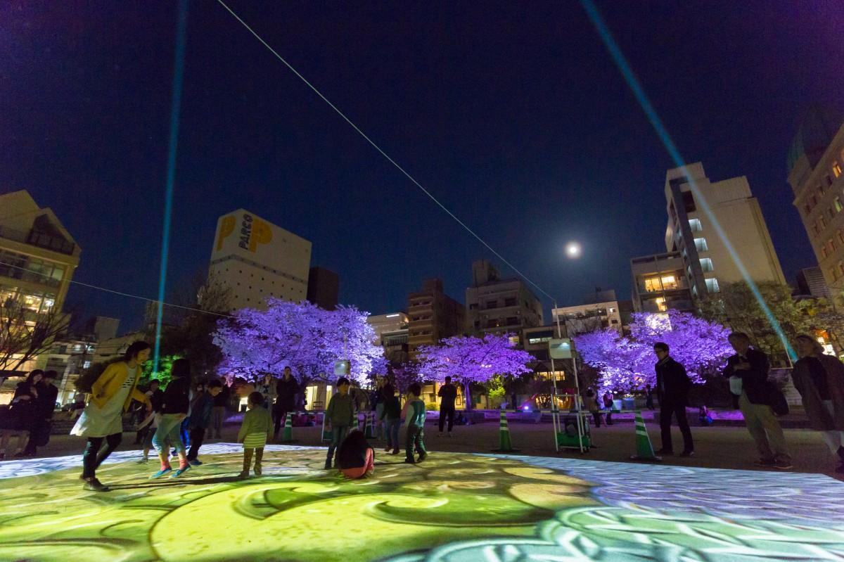 昨年行った桜の木の夜間ライトアップとプロジェクションマッピングの投影