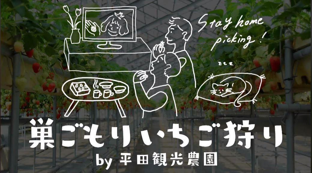 平田観光農園が提案する「巣ごもりいちご狩り」動画説明のワンシーン。イチゴの宅配は、出荷メインの農家に迷惑を掛けないように考えたという。