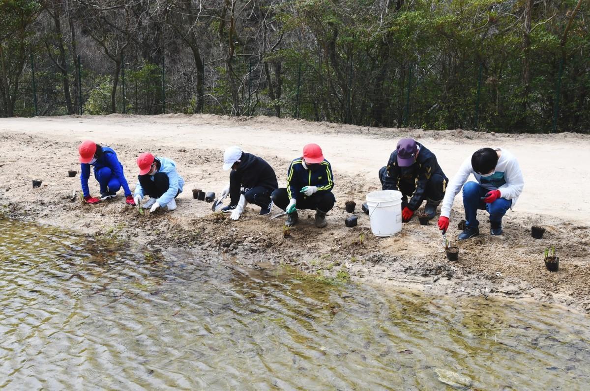 豪雨により被害を受けたビオトープを再生させる児童たち。再び生き物が住みやすい環境にするため、10種類の植物を植樹した。
