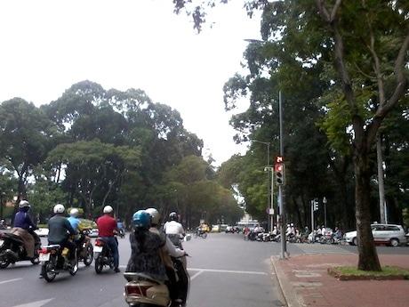 日本で発行された国際免許は、ベトナム国内では使用することができない