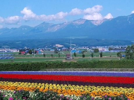 北海道の大自然と安全な食品をアピールする「Hokkaido Village」を開く予定
