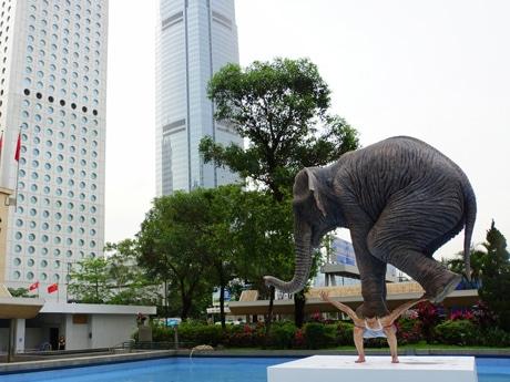 象を背中にのせバランスをとる男性。作者ファビアン・メレルさん自身は作品自分の姿を重ねている部分もあるという