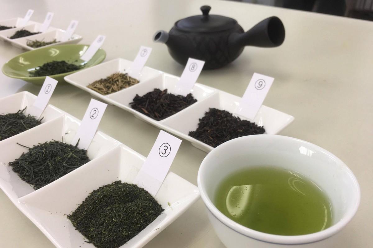 用意された10種の茶葉