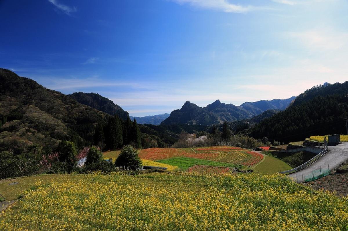深山幽谷の春を感じる宮崎・日之影町の中川地区