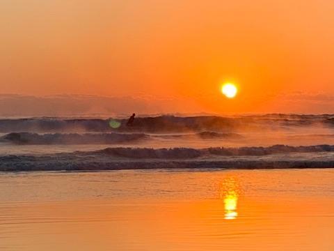 サーフィンを楽しむ人も
