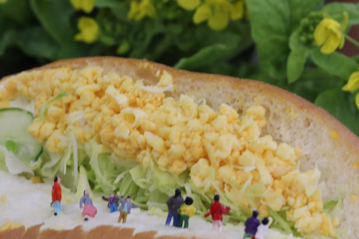 看板商品の調理パンの卵を菜の花に見立てた「春よ、来い!」