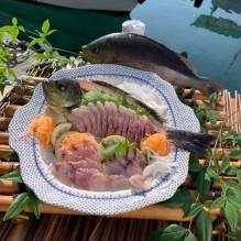 宮崎・島野浦の「しまん大学」がオンライン「魚のさばき方教室」