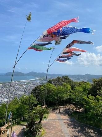 延岡の愛宕山にこいのぼり 日向灘望む展望台で優雅に泳ぐ