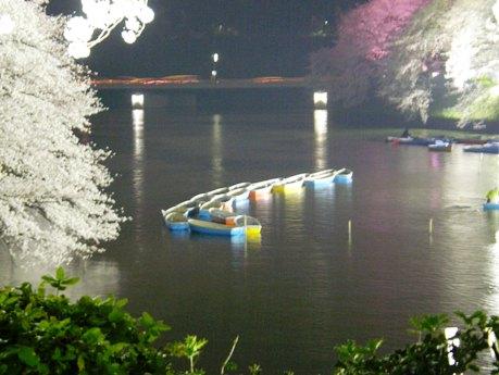 千鳥ケ淵緑道の桜のライトアップには毎年100万人以上の見物客が訪れる。