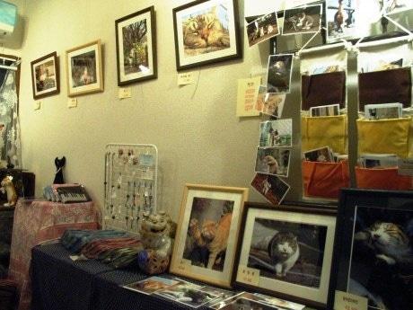 「ふくねこ堂」店内の「ネコノヒタイぎゃらりー」で開催している「猫まみれ!展」の様子