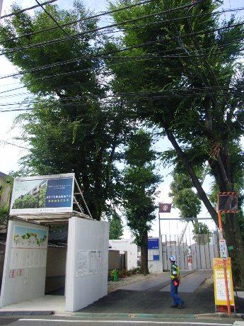 再建計画が進む神楽坂の赤城神社。境内入口のインフォメーションスペース脇には仮社殿へ続く仮参道を設けている。