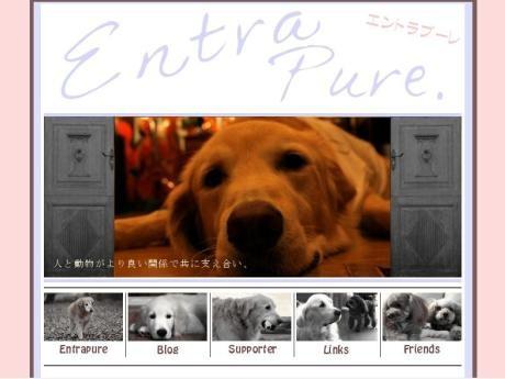 市ケ谷で犬や猫の保護施設支援を目的としたチャリティーコンサートが開催される。(画像=「エントラプーレ」ホームページのトップ画像)