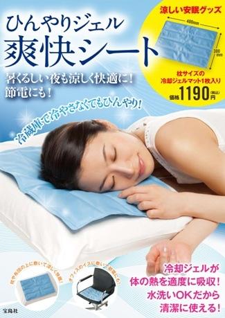 宝島社が節電対策商品として発売する「ひんやりジェル 爽快シート」(画像=パッケージイメージ)