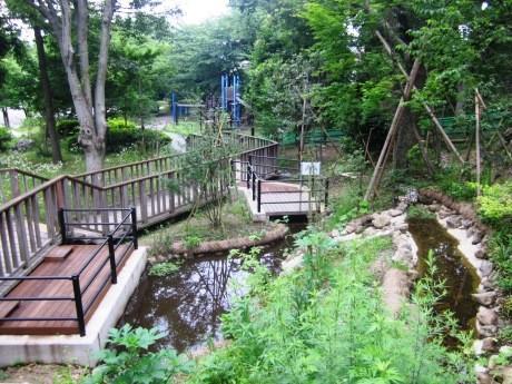 新宿区立みなみもと町公園に完成したビオトープ